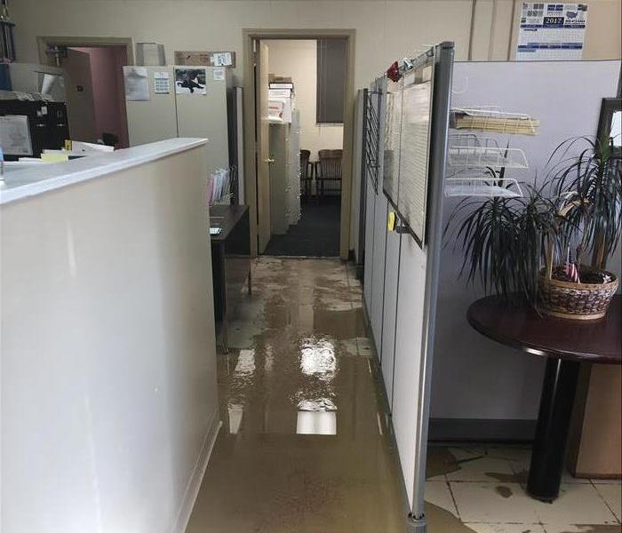 Cleaning Flooding In Office