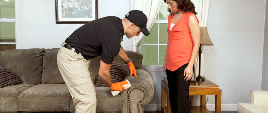 Hamilton, OH carpet upholstery cleaning